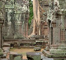 Ta Prohm Cambodia by Bob Christopher