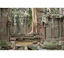 Ta Prohm Cambodia Photographic Print