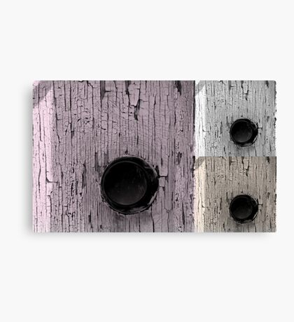 Soft Doors Canvas Print