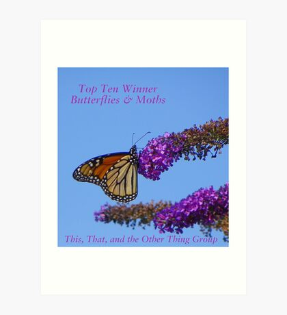 Top Ten Banner for Challenge Winners - Butterflies Art Print