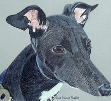 Greyhound- Black and White by Anita Meistrell Putman