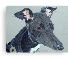 Greyhound- Black and White Canvas Print