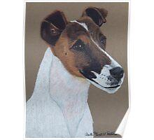 Fox Terrier Vignette Poster