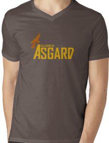Old Gods of Asgard Mens V-Neck T-Shirt