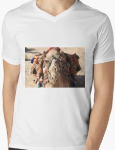 Close-up portrait of a camel, Negev, Israel Mens V-Neck T-Shirt