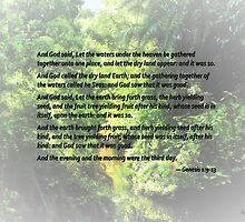 Genesis 1 9-13 ... and let the dry land appear by Susan Savad