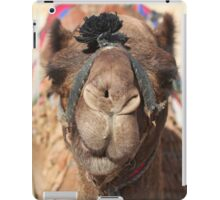 Close-up portrait of a camel, Negev, Israel iPad Case/Skin