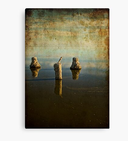 Glass Poles Layer Canvas Print