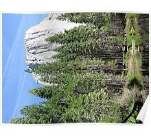 El Capitan- Yosemite Poster