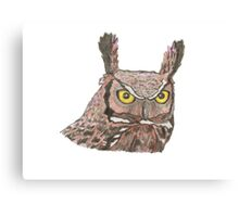 Owl watercolour pencil sketch Canvas Print