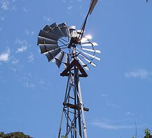 Windmill At The Zoo by robertemerald