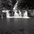 """Elabana Falls"" ∞ Lamington National Park, QLD - Australia by Jason Asher"