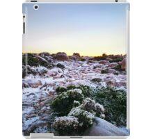 Frozen Plateau iPad Case/Skin
