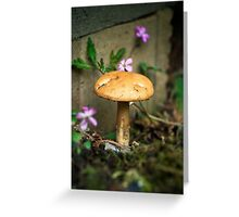 Wonderland mushroom Greeting Card