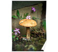 Wonderland mushroom Poster