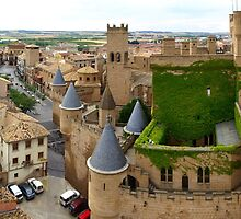 Panorama with Castle by photoshot44