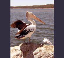 Pelican and Seagull  Unisex T-Shirt