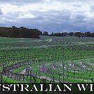 Australian Wine by reflexio