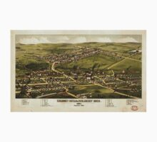 Panoramic Maps Calumet Hecla  Red Jacket Mich  1881 One Piece - Long Sleeve