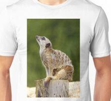 Meerkat (Suricata suricatta) Unisex T-Shirt