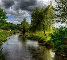 Willow & Water by NeilAlderney