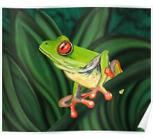 tropical Tree Frog Poster