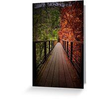 Indecisive Bridge Greeting Card