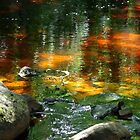 Still waters IPhone case by Heather Thorsen