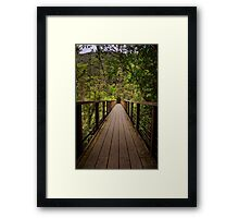 Suspension Bridge Framed Print