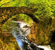 Hermitage Bridge by Don Alexander Lumsden (Echo7)