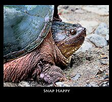 Snap Happy Chap by Nazareth