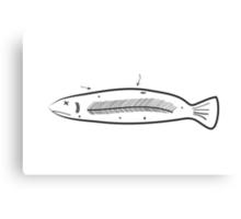 Sorry Fish Canvas Print