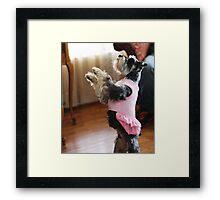 Ballerina Dog Framed Print