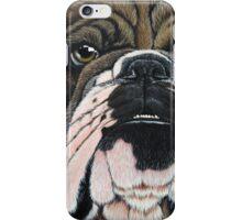 Beggin' Bully iPhone Case/Skin