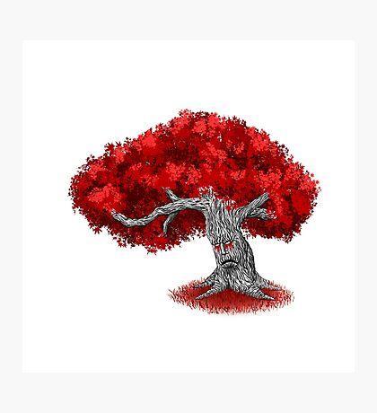 Fantasy Tree Photographic Print