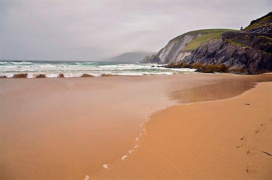 Kerry Shoreline  by Martina Fagan