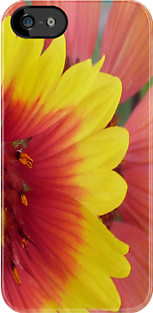 Flower Case Red & Yellow by Monte Roberts
