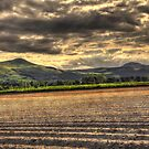The Lomond Hills HDR. by ninjabob