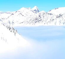 Inversion Day by Abby Lewtas