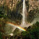 Bridalveil Falls by Peter Hammer