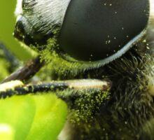 Bee Mimic 1  Sticker