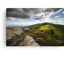Roan Mountain Rhododendron Bloom - A Glorious Greeting Canvas Print