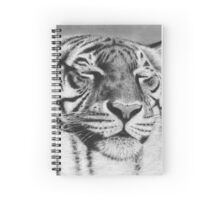 Sleepy Tiger Spiral Notebook