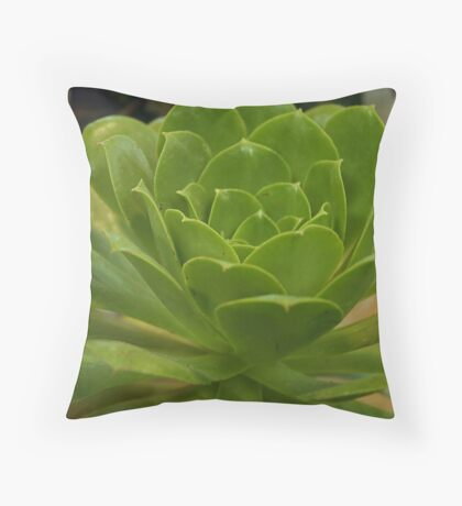 Succlent Throw Pillow