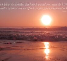 ~ Jeremiah 29:11 ~ by Donna Keevers Driver