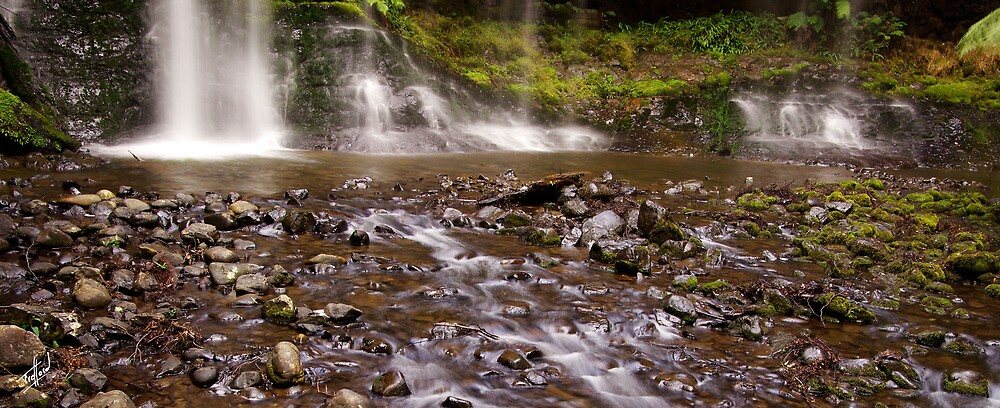 Russell Falls, the base and runoff by Traffordphotos