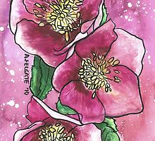 Hellebores iphone case by Alexandra Felgate