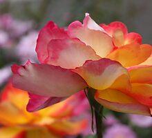 Rose Companions by FeeBeeDee