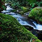 Mountain Stream by Stephen Ruane