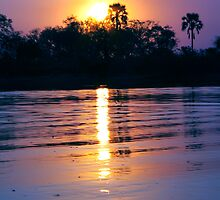 Okavango in Purple by JenniferEllen